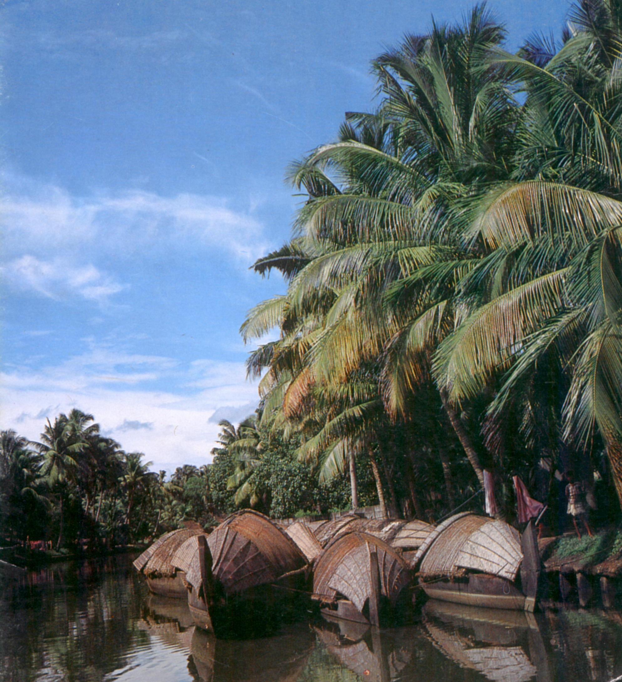 http://www.hipoints.com/Images/kerala-backwaters.jpg